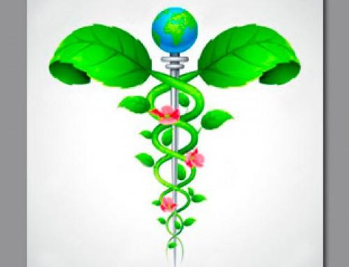 Binomio Salud y Energía vital
