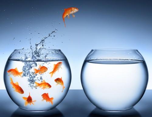 Detrás de un cambio nace una oportunidad